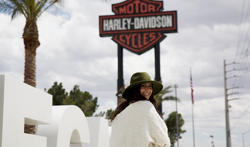 Harley-Davidson-The-Olive-Brunette